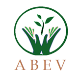 ASSOCIAÇÃO BENEFICENTE ESPERANÇA DE VIDA-ABEV