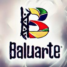 ONG BALUARTE