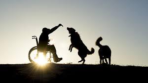 Ajuda a deficientes e pessoas em situação de risco