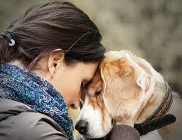Amor a Pet