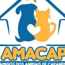 AMACAP Ass. Amigos dos Animais de Capanema Pará